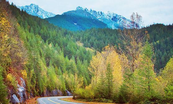 Photo of Beech Mountain