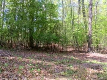 00 Spring Garden Road Reidsville, NC 27320 - Image 1