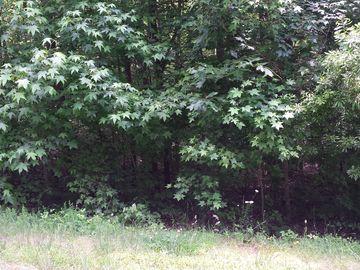 7007 Ridge Haven Road Greensboro, NC 27410 - Image 1