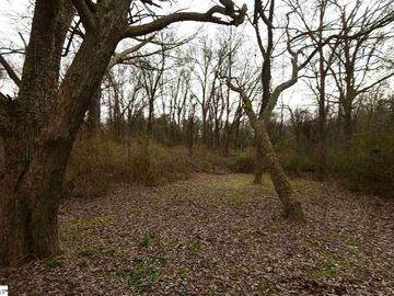3006 Brushy Creek Road Greer, SC 29650 - Image 1