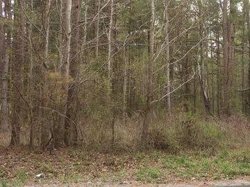0 Bullocksville Park Road Manson, NC 27537 - Image 1