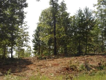 Lot 57 Twin View Drive Westminster, SC 29693 - Image 1