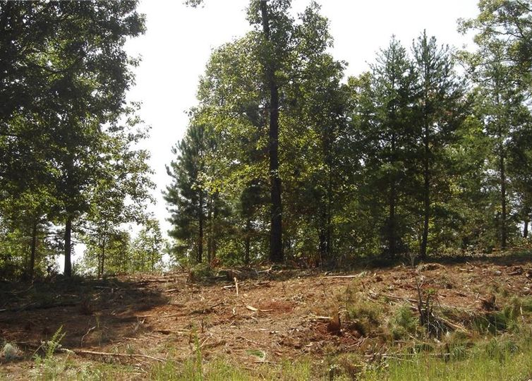 Lot 57 Twin View Drive Westminster, SC 29693