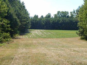0 Marshburn Road Wendell, NC 27591 - Image 1