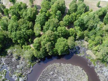 260 Everett Yopp Drive Sneads Ferry, NC 28460 - Image 1