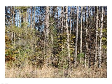 2248 S Nc Highway 87 Graham, NC 27253 - Image