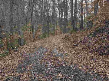 16 Green Leaf Drive Greenville, SC 29617 - Image 1