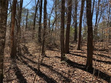 Lot 20 Cliffs At Keowee Road Sunset, SC 29685 - Image 1