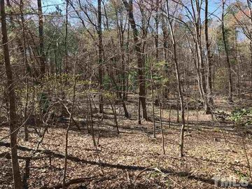 LOT 5 Silverberry Road Pittsboro, NC 27312 - Image 1