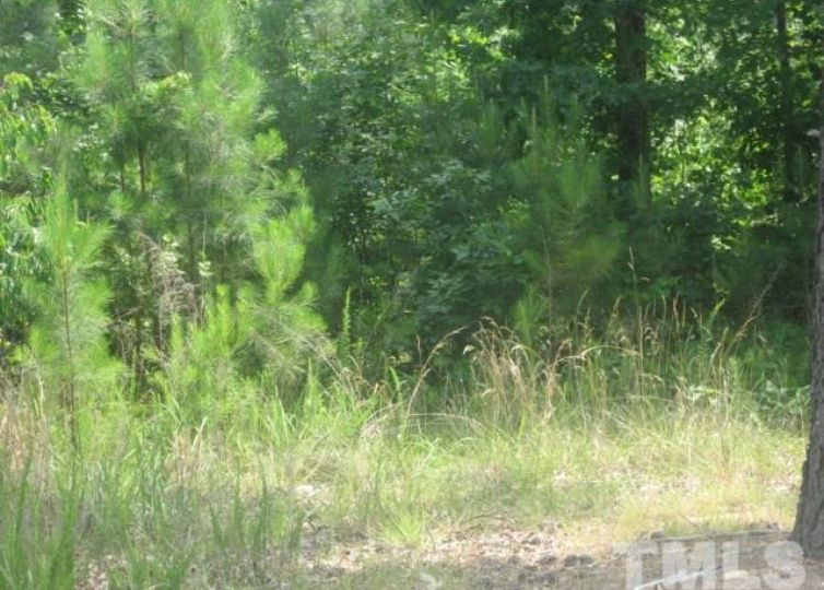 188 High Ridge Lane Pittsboro, NC 27312