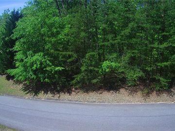 Lot 13 Junaluska Trail Sunset, SC 29685 - Image 1