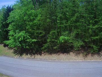 Lot 13 Junaluska Trail Sunset, SC 29685 - Image 1