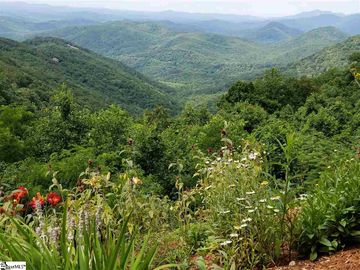 1227 Mountain Summit Road Travelers Rest, SC 29690 - Image 1