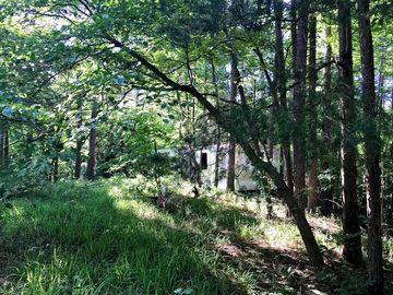 325 Boomerang Trail Fair Play, SC 29643 - Image 1