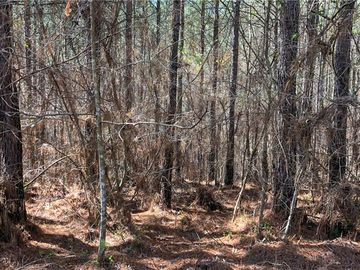 Lot 217 Highridge Drive Seneca, SC 29672 - Image 1