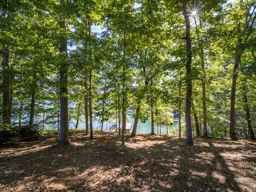 000 Treehaven Ct/ Lot 45 Waterford Pointe Seneca, SC 29672 - Image 1