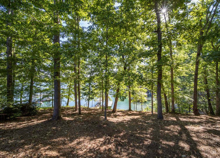 000 Treehaven Ct/ Lot 45 Waterford Pointe Seneca, SC 29672