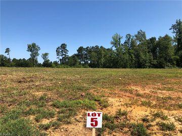 1040 Allie Sykes Trail Burlington, NC 27217 - Image 1