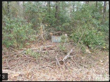 166 Deer Hound Drive Kenansville, NC 28349 - Image 1