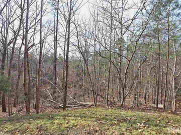 10365 Stephens Chapel Hill, NC 27517 - Image 1