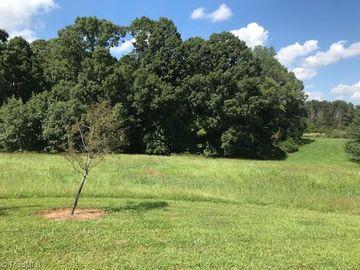 101 Cobblestone Walk Drive Greensboro, NC 27455 - Image 1