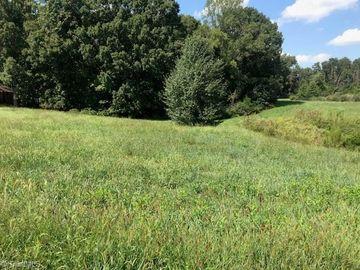 103 Cobblestone Walk Drive Greensboro, NC 27455 - Image 1