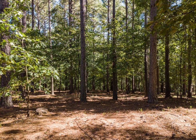 000 Wendover Ct/ Lot 129 Waterside Crossing Seneca, SC 29672