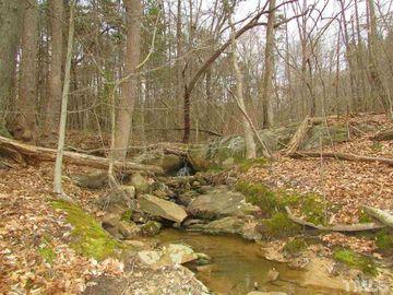 64.02 acres Gentry Ridge Road Roxboro, NC 27574 - Image 1