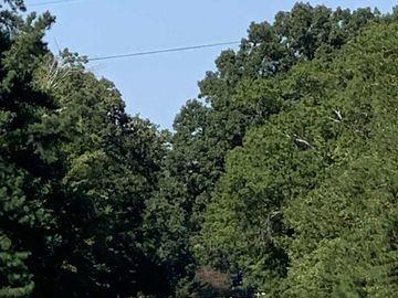 Polk Huff Road Roxboro, NC 27574 - Image 1