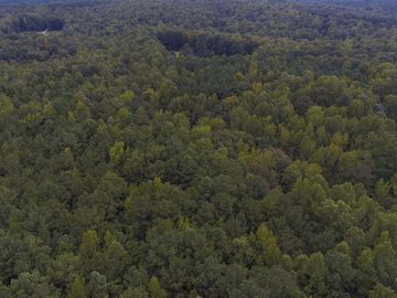 000 Green Hill Road Franklinton, NC 27525 - Image