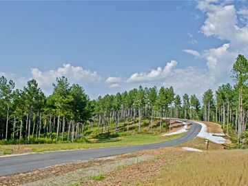 Lot 51 Cove Harbor Drive Six Mile, SC 29682 - Image 1