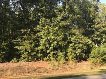 6995 Lot 42 Summertime Drive Gibsonville, NC 27249 - Image 1