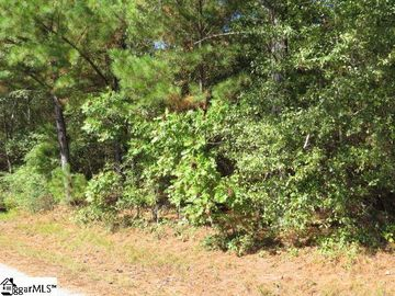 Mcneely Road Liberty, SC 29657 - Image 1
