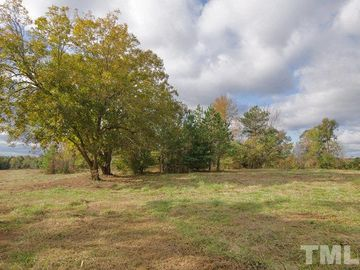 708 Frazier Road Spring Hope, NC 27882 - Image 1