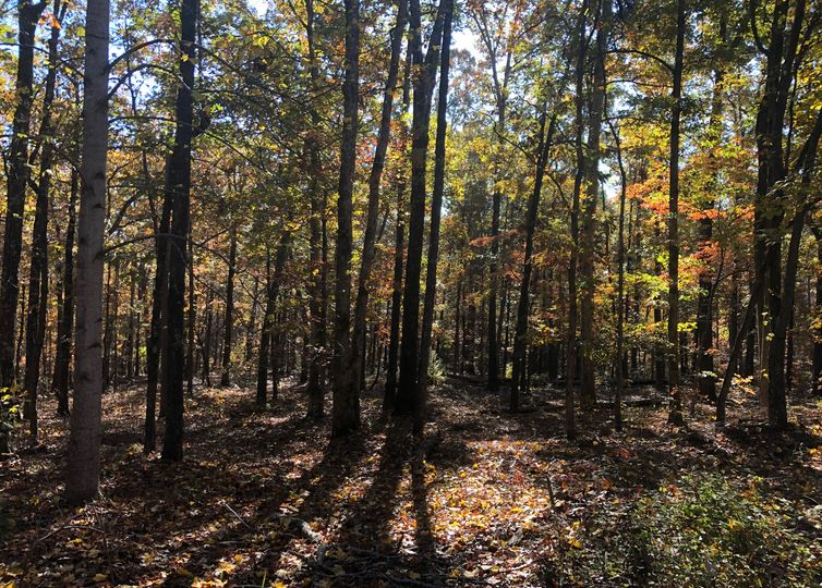 Lot 270 Maplewood Court Seneca, SC 29672