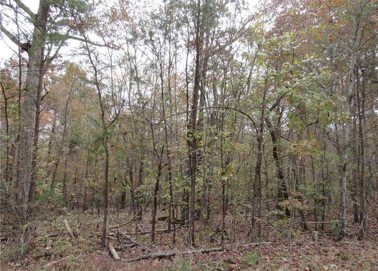 4 Shady Hollow Road Staley, NC 27355