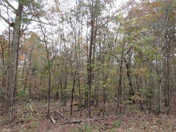4 Shady Hollow Road Staley, NC 27355 - Image