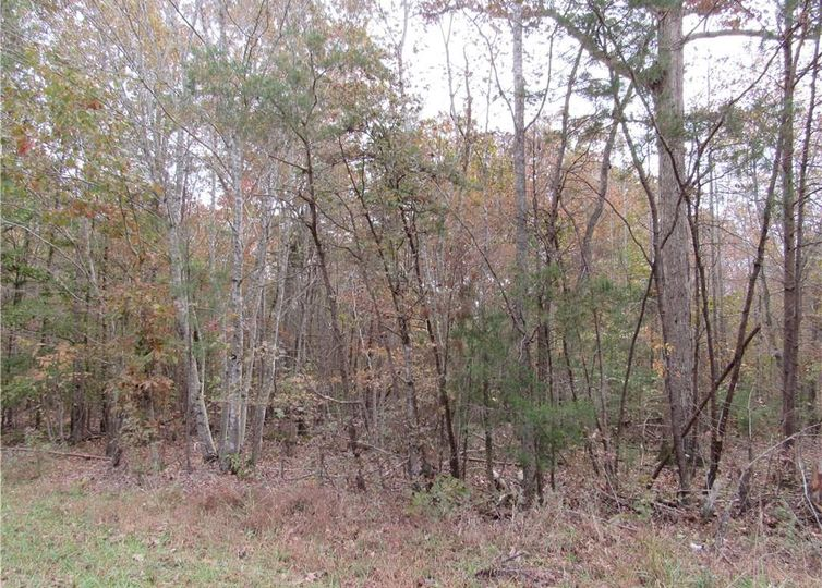 6 Shady Hollow Road Staley, NC 27355