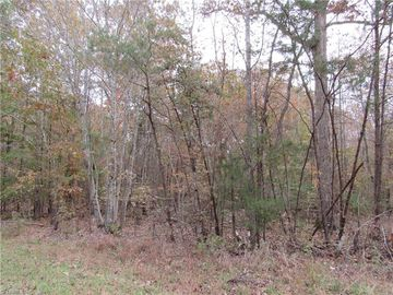 6 Shady Hollow Road Staley, NC 27355 - Image