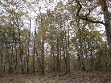 7 Shady Hollow Road Staley, NC 27355 - Image