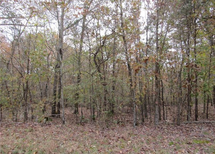 8 Shady Hollow Road Staley, NC 27355