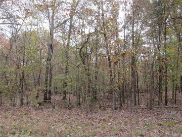 8 Shady Hollow Road Staley, NC 27355 - Image