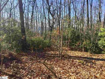 912 Red Sky Trail Landrum, SC 29356 - Image 1