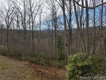 Lot 142 Tanglewood Trail Blowing Rock, NC 28605 - Image 1