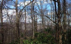 Tbd Stony Creek Way Boone, NC 28607 - Image 1