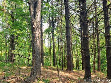 TBD Wind Dancer Ridge Access Road West Jefferson, NC 28694 - Image 1