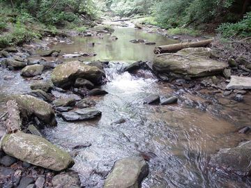 1105 Fall Creek Road Purlear, NC 28665 - Image 1