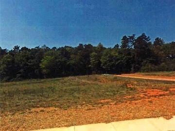 3351 Serenity Ridge Lane Tobaccoville, NC 27050 - Image