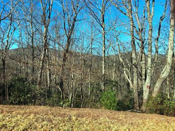 Lot 122 Firethorn Trail Blowing Rock, NC 28605 - Image 1