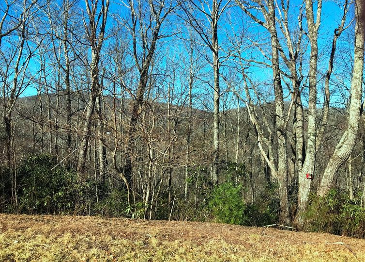 Lot 122 Firethorn Trail Blowing Rock, NC 28605